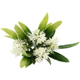 lavendel hvit 12cm