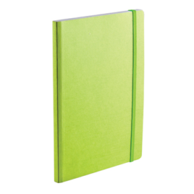 EcoQua notebook A5 prikker lime
