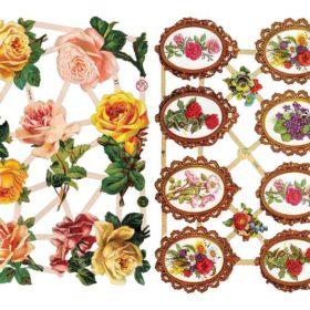 Glansbilder - roser