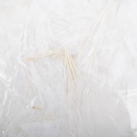 Fjær 25g hvit