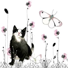Dobbelt kort - Black Cat
