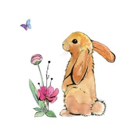 Dobbelt kort - Bunny & Butterfly