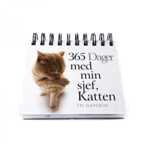 Katten 365 dager
