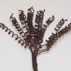 Pyntegren spiral brun
