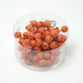 bær frost orange